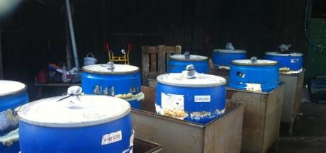 Tientallen drugsvaten gedumpt bij champignonkwekerij in Boekel van boerin Michelle van Boer Zoekt Vrouw