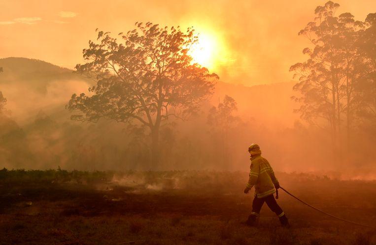 Een brandweerman probeert een bosbrand in bedwang te houden in het Australische Hilville, een paar honderd kilometer ten noorden van Sydney, in november 2019. Beeld AFP
