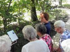 Wandelen langs 'Marietje Kessels' in de tuin van Het Laar