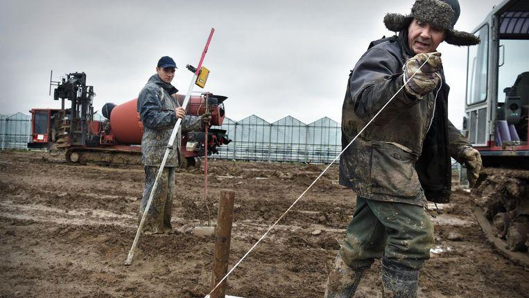 In Bemmel ploegen bouwers door de modder. Over een paar maanden moeten hier miljoenen aardbeien groeien. Beeld Marcel van den Bergh/ de Volkskrant