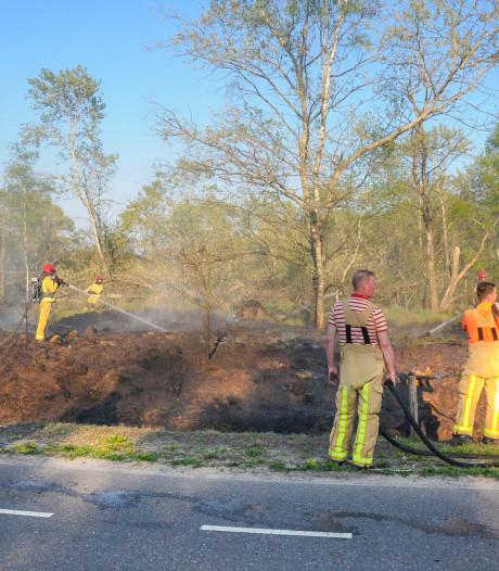 Natuurbrand langs weg in Budel-Dorplein snel onder controle