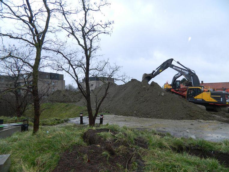 De eerste bomen aan het Hof van Praet gingen er gisteren al uit.