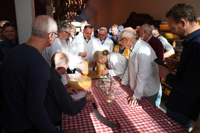 De kaaskeuring in volle gang bij Wijnhuis De Blauwe Camer bij het Catharinadal in Oosterhout.