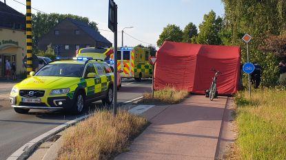 Vrouw (93) overleden na aanrijding door pick-up op oversteekplaats