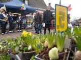 Markt in Dinxperlo open voor eigen inwoners, niet voor andere 'Duitse buren'