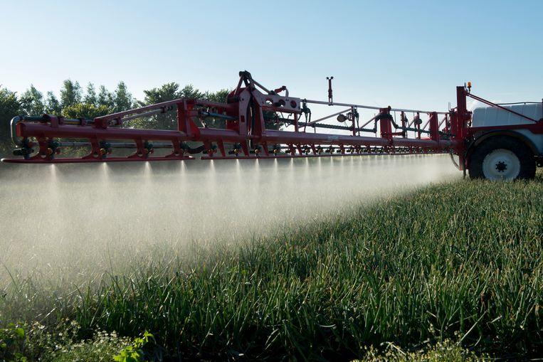 Landbouwgif wordt over uien gespoten.  Beeld Hollandse Hoogte / Sabine Joosten
