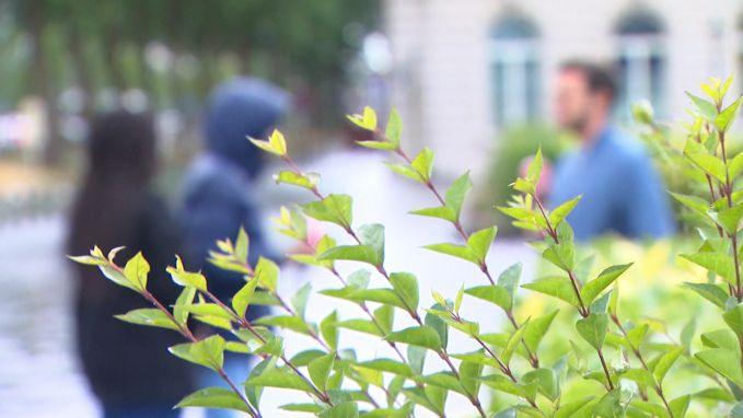 Tieners willen standbeelden Leopold II weg uit Brussel