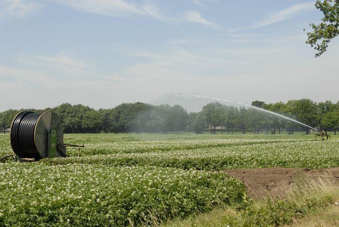 Boeren mogen niet overal hun akkers of graslanden beregenen.