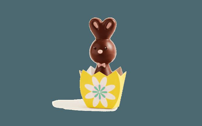 Les petits lapins au chocolat noir, au lait ou blanc sont disponibles en ligne au prix de 9,90 euros.