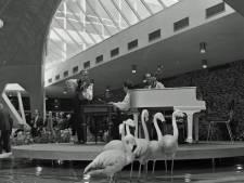 RHC Eindhoven zoekt verhalen achter de foto's: De opening van Grand Hotel Cocagne