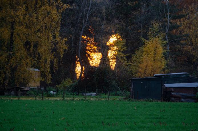 Metershoge vlammen langs de A58.