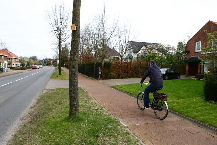 De Rijksstraatweg, anno maart 2020. Een jaar eerder hing het hier nog vol rode waarschuwingslinten. Nu hagen er nestkastjes.