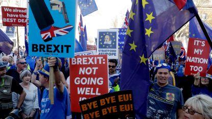 "Europese leiders verdeeld over mogelijk brexituitstel: ""Om wat te doen?"""