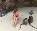 Eén van de apen had het op de piercing van Amber gemunt