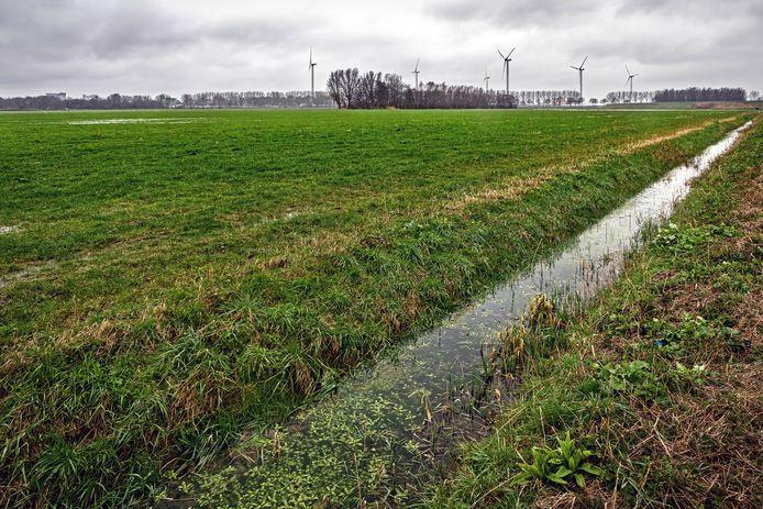 De Oranjepolder aan de noordkant van Oosterhout gezien vanuit de hoek waar het fietspad onder de snelweg A59 doorsteekt richting Raamsdonksveer. Aan de horizon de Statendamweg, geheel rechts in beeld het talud van de snelwegoprit van de A59 richting Raamsdonksveer. In dit deel van de polder moet een zonnepark gerealiseerd worden.