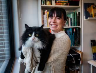 Waar is Pablo? Kontichse illustratrice maakt zoekboek over haar kat