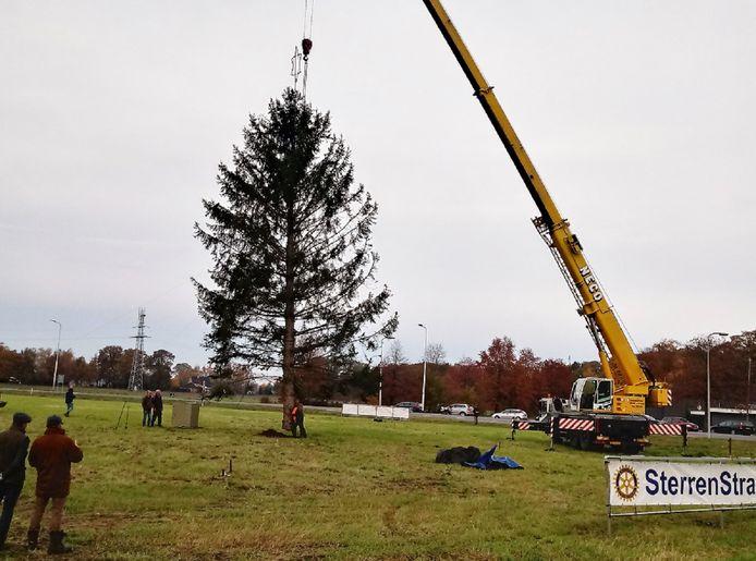 De dit jaar uit Beckum aangevoerde boom wordt op zijn plek getild voor de jaarlijkse Sterren Stralen-actie.