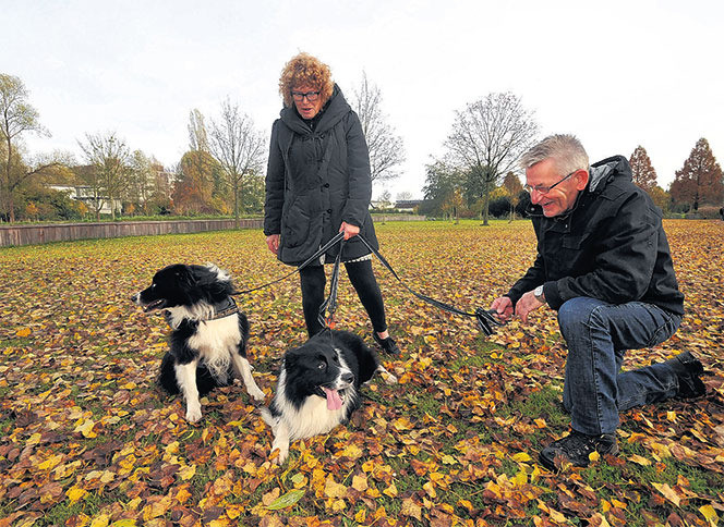 Lydia en haar man Gijs laten de honden uit in het nu nog niet vuurwerkvrije Wielwijkpark.