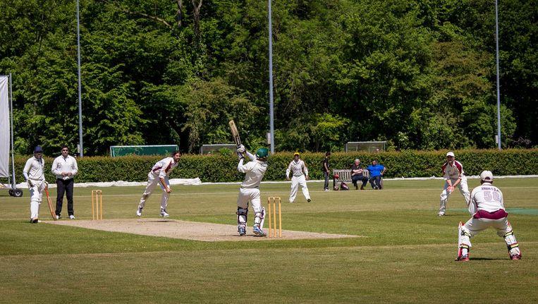 Cricketers van VRA Beeld Het Parool