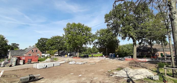 De plek waar de rotonde in de Graafsebaan gepland is. In het midden en rechts op de foto staan de eiken die zouden moeten wijken.