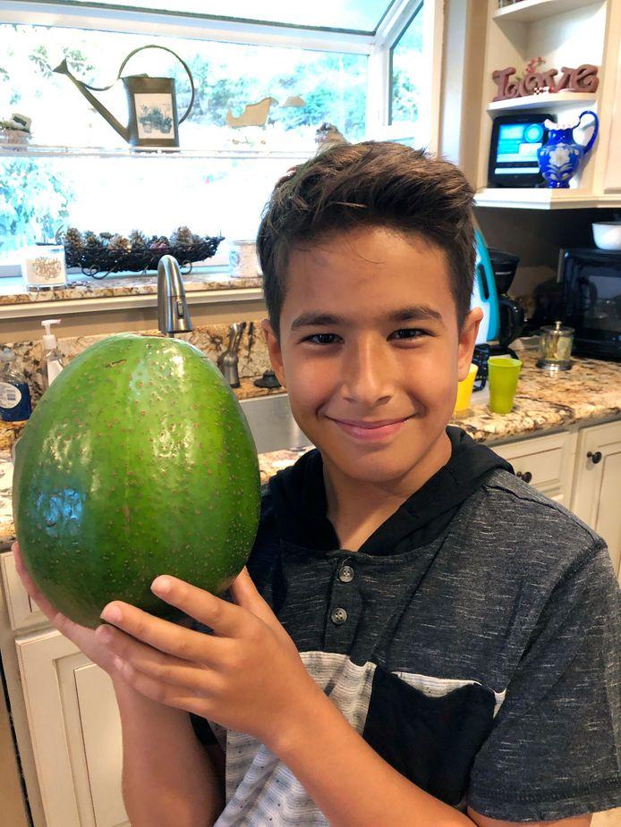 Zoontje Loihi Pokini poseert met de recordbrekende avocado.