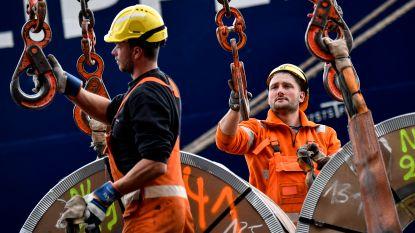 Antwerpse haven herpakt zich na dipje in december en januari: dit jaar worden 800 havenarbeiders aangeworven