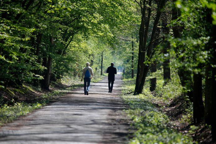 Het Klingspoor tussen Hulst en de Clinge is een geliefde wandel- en fietsroute.