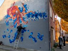 Gemeente wil in 2020 meerdere grote muurschilderingen in de stad, kunstenaar Erik Veldmeijer trapt alvast af