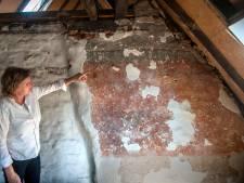 Bijzondere Bossche middeleeuwse muurschildering ontdekt: 'Daar had de wc moeten komen!'