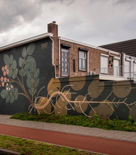 Nieuwe Bredase Blind Wall eert Vincent van Gogh