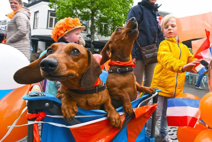 Koningsdag in Oosterhout