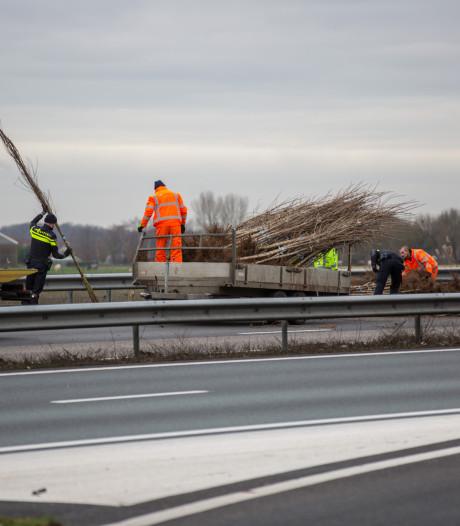 Boompjes op de weg door gekantelde aanhanger op A58 bij Roosendaal
