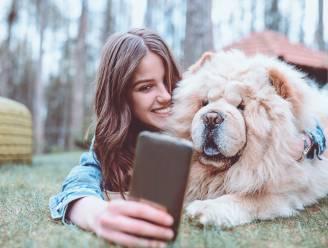 Met deze 7 tips krijg je je hond ein-de-lijk eens mooi op de foto