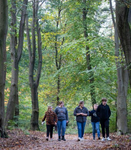 Coronaproof wandelen in de Edese en Rhenense bossen: mijd de drukke momenten