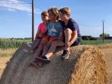 Zomerfoto's: Lekker rollebollen op het Franse platteland