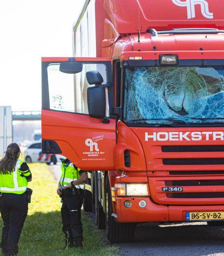 Chauffeur krijgt schrik van zijn leven: zwaan vliegt op A27 bij Eemnes dwars door de voorruit en sterft