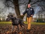 Jeroen Sluik gaat de politiek in: 'Glanerbrug is veiliger, mijn taak is volbracht'