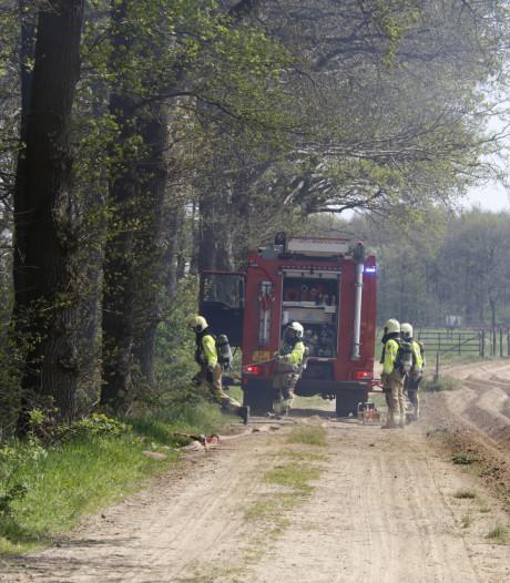 Opnieuw bosbrand in Land van Cuijk: paar hectare bos in brand bij Maashees