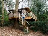 Van boomhuttenbouwer tot boomkweker: deze mensen werken in het bos