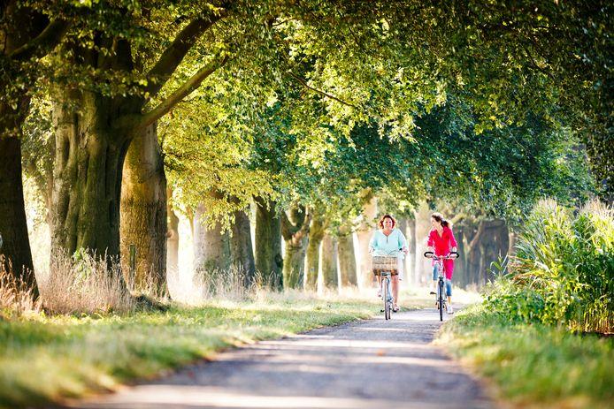 Toerisme Rijssen-Holten presenteert de gemeente onder meer als prachtig gebied om te fietsen.