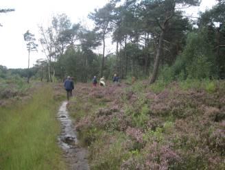 Vlaanderen maakt 62.000 euro vrij voor natuurproject in Mol