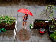 Tuin aanpassen aan extreem weer: Nissewaard begint een proef