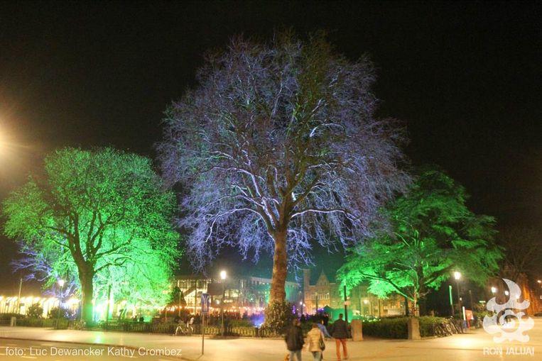Onder meer de bomen op het plein zullen sfeervol uitgelicht worden.