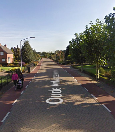 Auto's te gast in Oude Antwerpsepostbaan