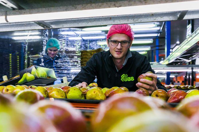 Robin van Lint werkt als fruitsorteerder bij Van de Water Fruit in Waalwijk.