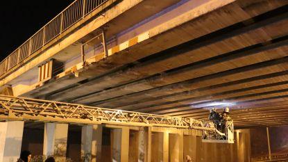 Vrachtwagen rijdt met lading tegen brug en veroorzaakt heel wat schade, brokstukken belanden ook op auto