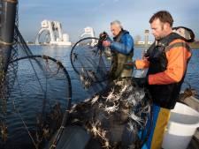 Vader Frans en zijn zoon Frans junior redden palingen van de dood bij de stuw van Amerongen