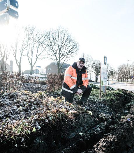 Hovenier Gijs baalt van vrachtwagen die dwars door plantsoen op Babberichse rotonde rijdt: 'Chauffeur is gewoon doorgereden'