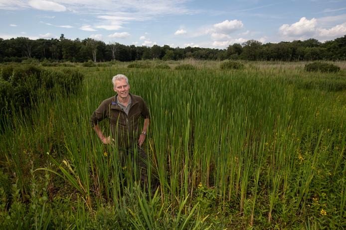 De aanhoudende droogte heeft gevolgen voor de natuur op De Velhorst. Boswachter en ecoloog Michiel Schaap staat in een drooggevallen vennetje op de Velhorst.