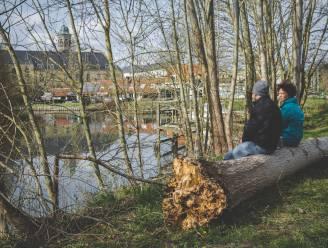 """Op huizenjacht in… Drongen: """"Het beste van de stad en het platteland, maar dat betaal je ook"""""""